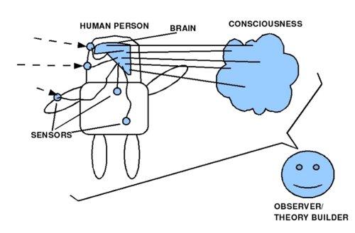 Gehirn im Körper von Beobachter A gesehen aus der Perspektive von Beobachter B