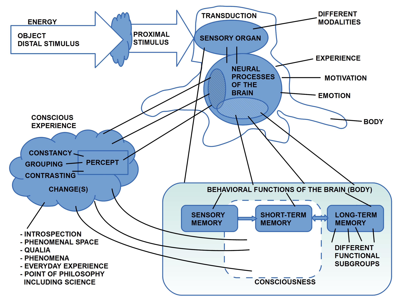 Skizze zum Zusammenhang von 'Außenweltereignissen' und 'Innenweltereignissen', sowie 'Neuronal' vs. 'Funktional', dazu die spezielle Rolle des 'bewussten Erlebens'