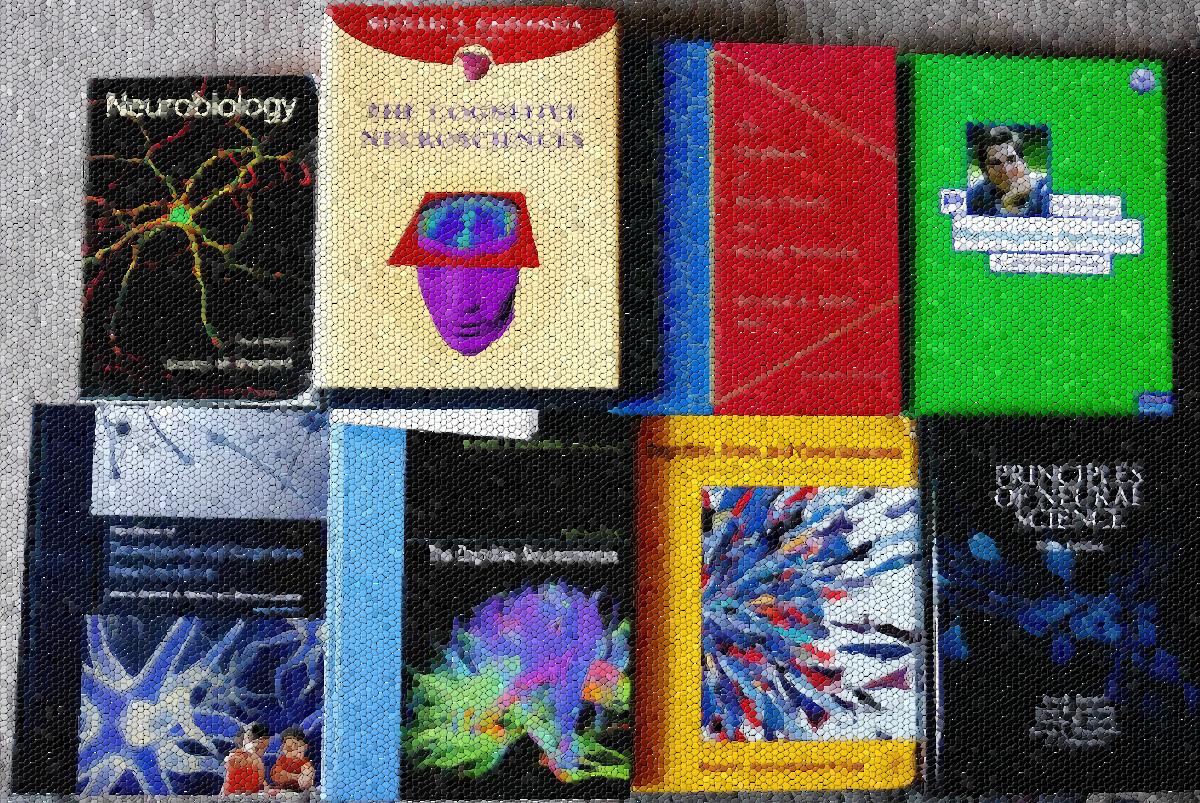Buecher vom 12.April 2014 zum Thema genetisch-neuronale Grundlagen der Sexualität