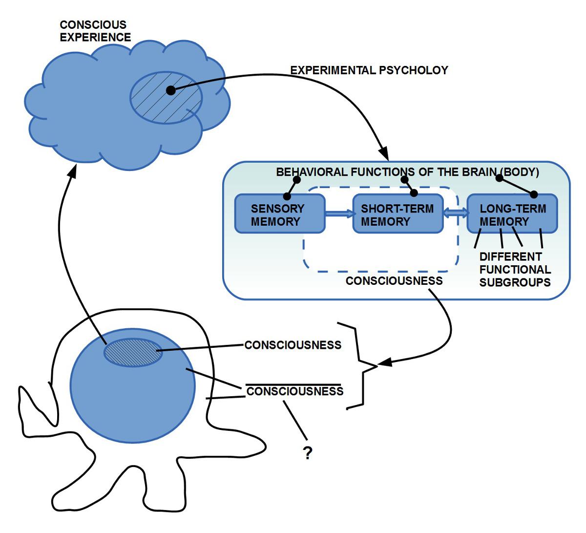 Ausgehend vom 'Bewusstsein' kann uns die Pschologie helfen, den Komplementärbegriff des 'Nichtbwusstseins' zu bilden