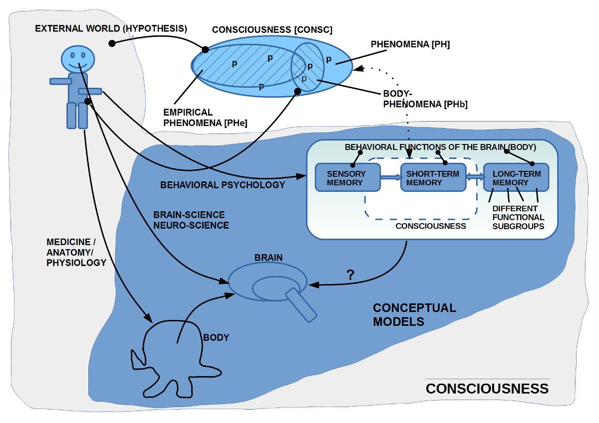 Vom 'Bewusstsein' zu 'Modellen', die helfen, die Einzelphänomene zu deuten