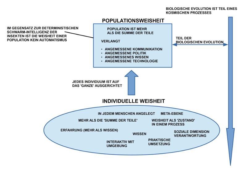 Diagramm Philosophiewerkstatt 8.März 2015 - Strukturelemente von 'Weisheit'