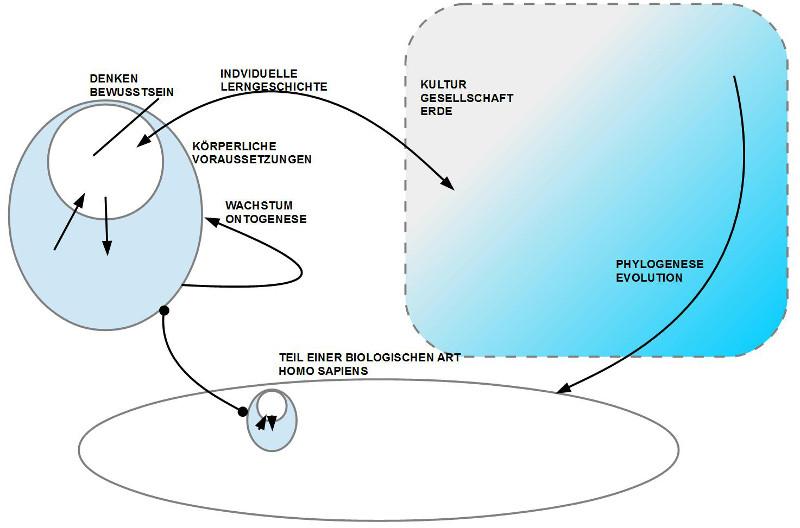 Schaubild: Denken-Bewusstsein-Koerper-Art-Evolution