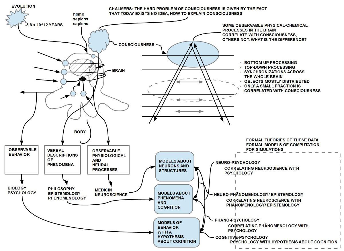 Die drei großen Blickweisen auf den Menschen (Verhalten, Gehirn, Bewusstsein) und deren möglichen Verknüpfungen